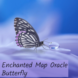 Enchanted Map Oracle Butterfly