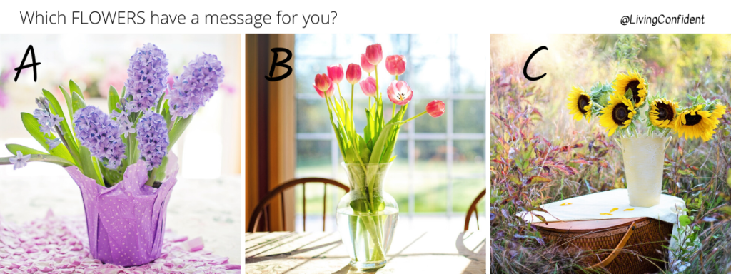 Messages from the Flowers