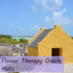 Flower Therapy Oracle Hut Message