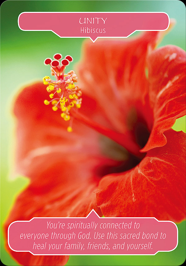 Flower Therapy Oracle Message
